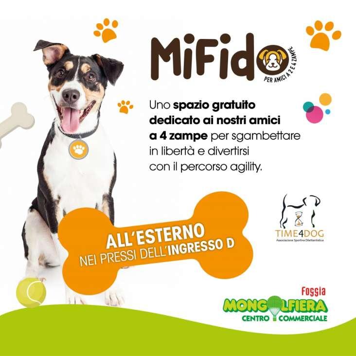 MiFido